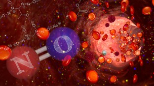 Is Nitric Oxide a Cancer-Healing Powerhouse?