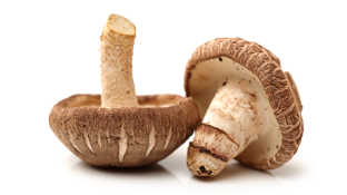 Shiitake Mushroom: Gourmet Ingredient or Medicinal Powerhouse?