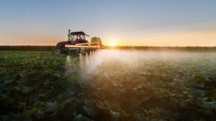 Weeding Out the Truth: Landmark Case Exposes Monsanto's Glyphosate Lies