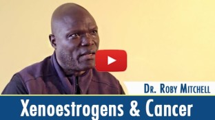 The Link Between Xenoestrogens and Cancer (video)