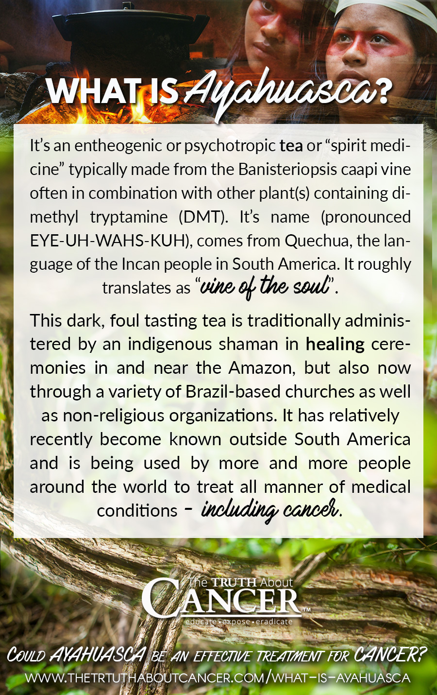"It's an entheogenic or psychotropic tea or ""spirit medicine"" typically made from the Banisteriopsis caapi vine often in combination with other plant(s) containing"