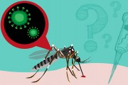 zika-part1-health-scare
